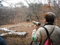 日本野鳥の会ひょうごの先生