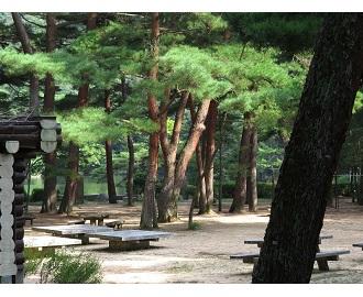 あいな里山公園を歩く3