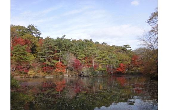 六甲山専門学校11月「森林植物園のお仕事」2016③