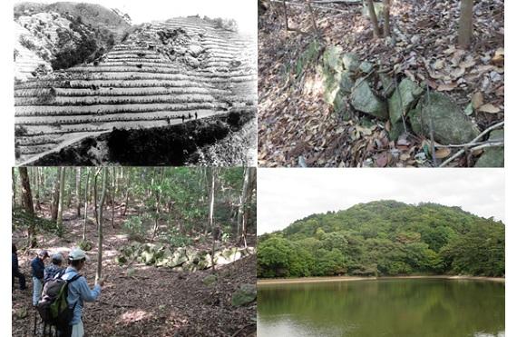 六甲山の緑の原点探索ツアー