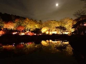 夜の紅葉散策&ザ・ナイトミュージアム2