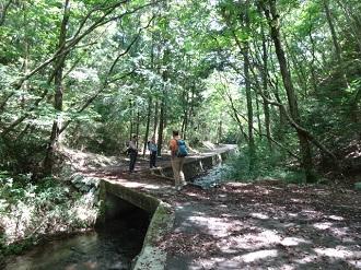 渓流沿いのハイキングルート