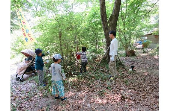 森の小学校[1]