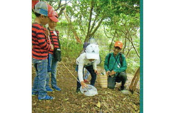 0802 写真(森林インストラクター兵庫六甲山環境学習プログラム平成29年度)
