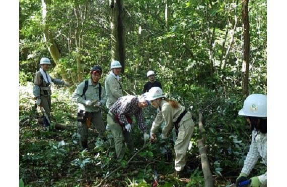 森の世話人 交流の森(1)