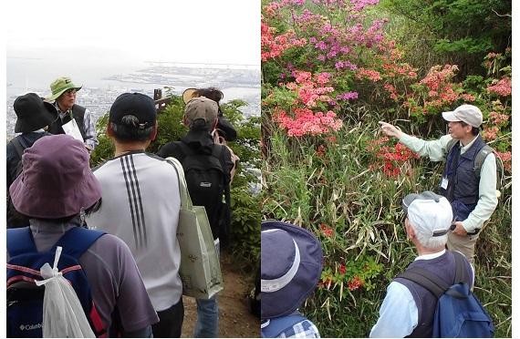 【画像】春の六甲山ハイキング2020.03